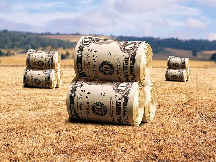 Сельский кредит