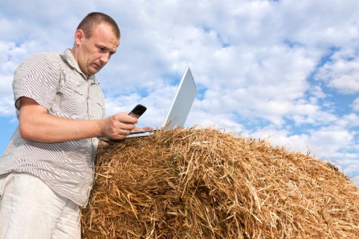 кредит фермеру